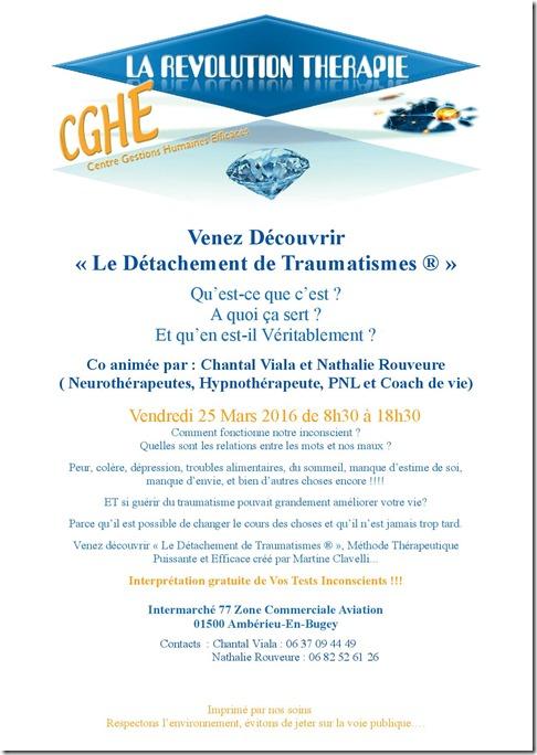 Journée découverte DT à Ambérieu-En-Bugey 25 03 2016